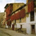 De paseo por Lodosa en Navarra