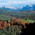 El Valle del Roncal en Navarra