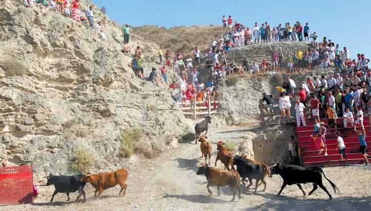 Encierro-del-estrecho-de-Arguedas.-7-VIII-2012
